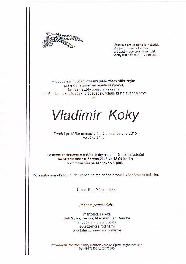 77_koky_vladimir